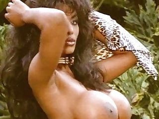 Barocca - Amazing Amazon Beauties Glamour