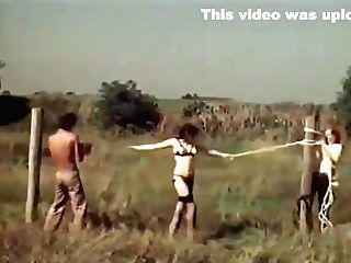 Hump In Field 70s